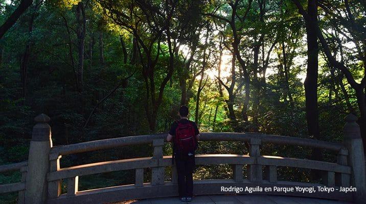 Rodrigo Aguila en Parque Yoyogi, Tokyo - Japón